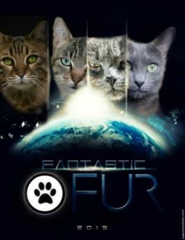 Fantastic Fur